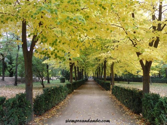 Los Jardines del Palacio de Aranjuez