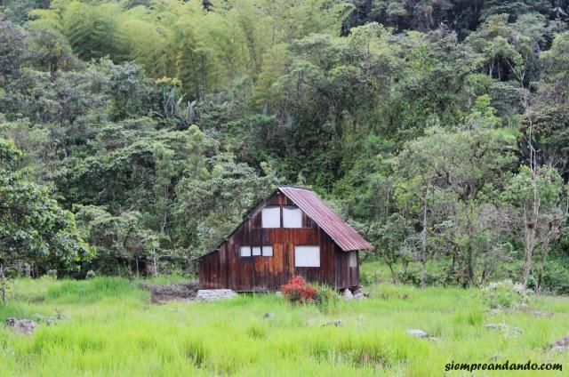 Cabaña abandonada camino al mariposario