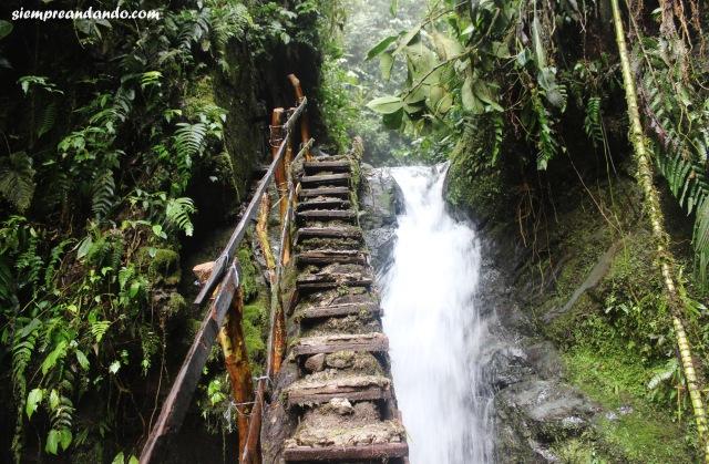 Las precarias escaleras que nos llevan hacia la cascada la Reina