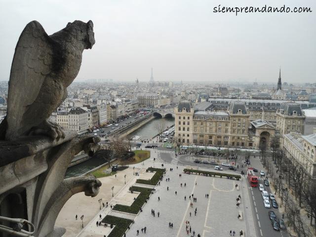 Vista desde la cima de la Catedral de Notre Dame