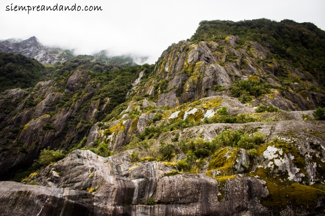 Paredones de piedra custodian el sendero rumbo a Franz Josef Glacier.