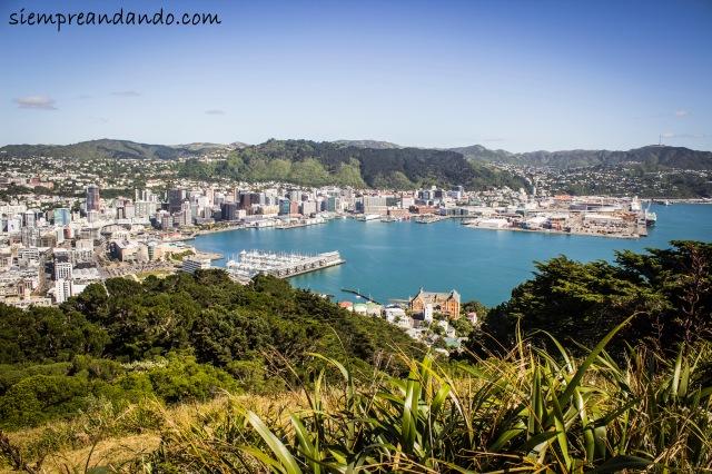 La capital neozelandesa desde las alturas: Wellington.