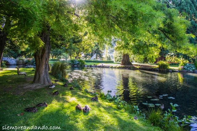 Los jardines de Queenstown.
