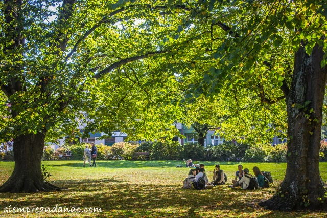 Alumnos universitarios en una plaza de Dunedin.