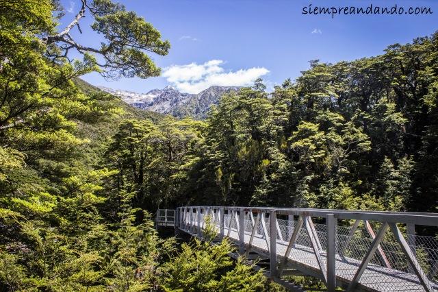 Puente camino a las Devils Punchbowl Falls, en Arthur's Pass.